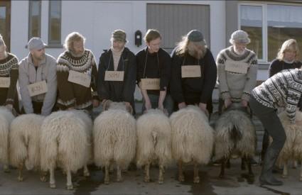 """""""Barany. Islandzka opowieść"""" – reż. Grímur Hákonarson"""