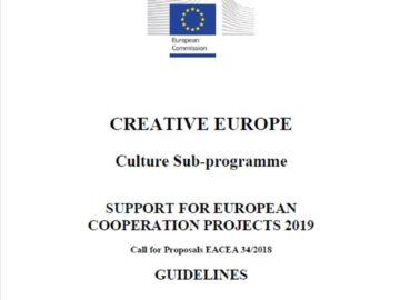 Przewodnik po obszarze grantowym Projekty współpracy europejskiej w języku angielskim – konkurs 2019 [plik pdf, 380 KB]
