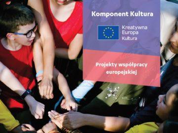 Projekty współpracy europejskiej – konkurs 2019 [plik pdf, 733 KB]